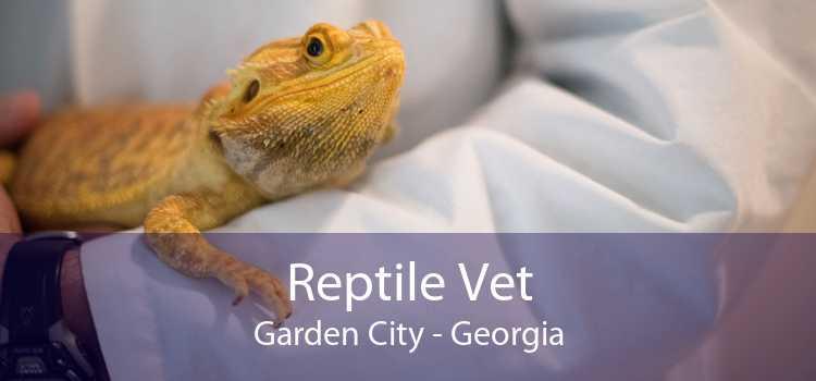 Reptile Vet Garden City - Georgia