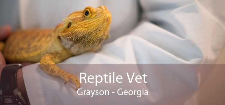 Reptile Vet Grayson - Georgia