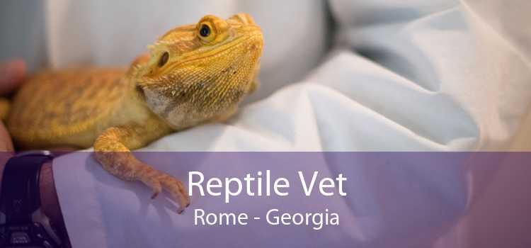 Reptile Vet Rome - Georgia