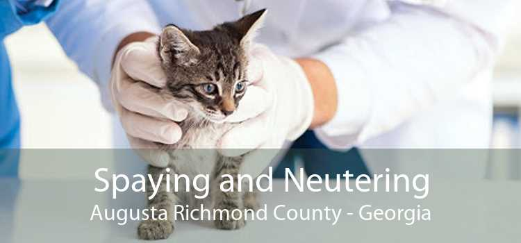Spaying and Neutering Augusta Richmond County - Georgia