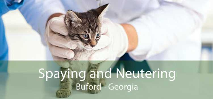 Spaying and Neutering Buford - Georgia