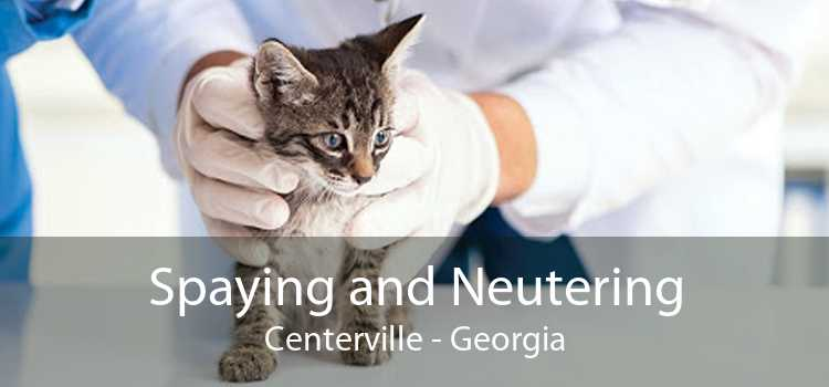 Spaying and Neutering Centerville - Georgia