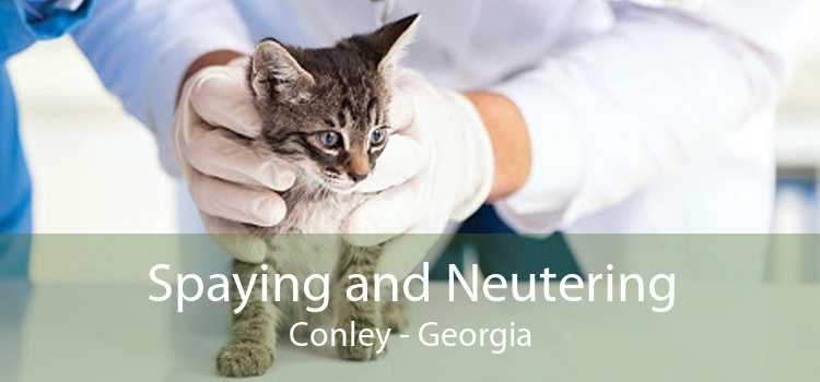 Spaying and Neutering Conley - Georgia
