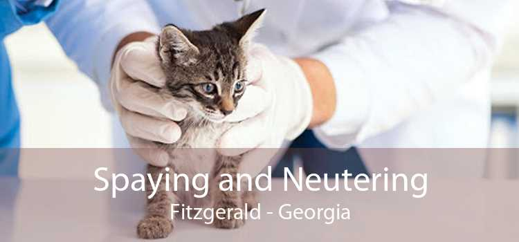 Spaying and Neutering Fitzgerald - Georgia