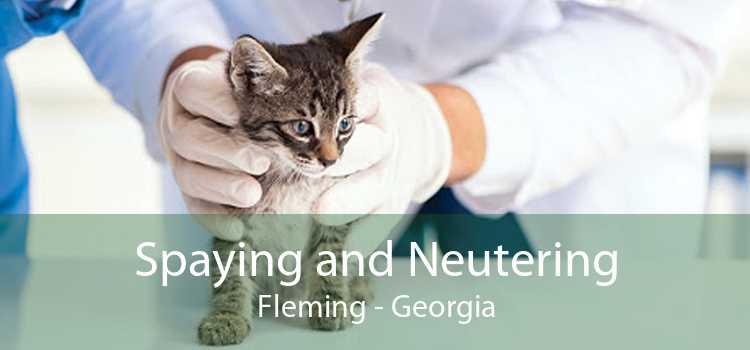 Spaying and Neutering Fleming - Georgia