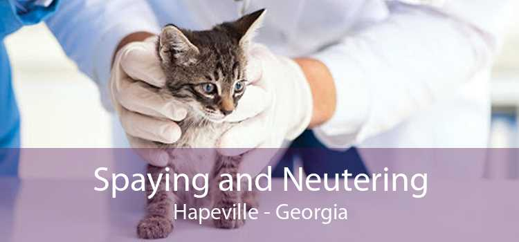 Spaying and Neutering Hapeville - Georgia