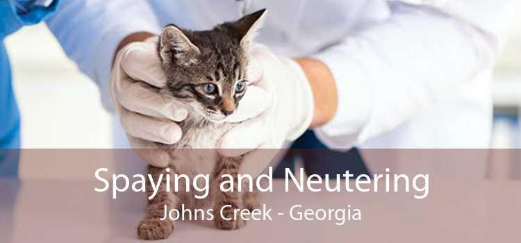 Spaying and Neutering Johns Creek - Georgia