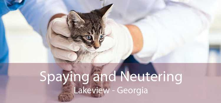 Spaying and Neutering Lakeview - Georgia