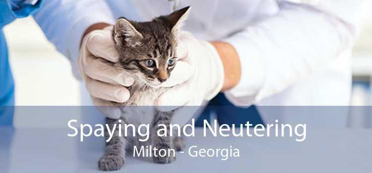 Spaying and Neutering Milton - Georgia