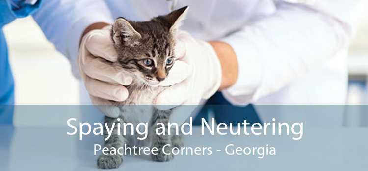 Spaying and Neutering Peachtree Corners - Georgia