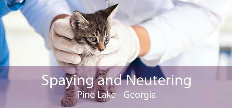 Spaying and Neutering Pine Lake - Georgia