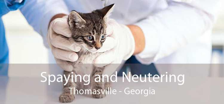 Spaying and Neutering Thomasville - Georgia