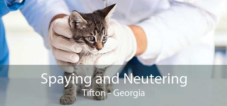Spaying and Neutering Tifton - Georgia